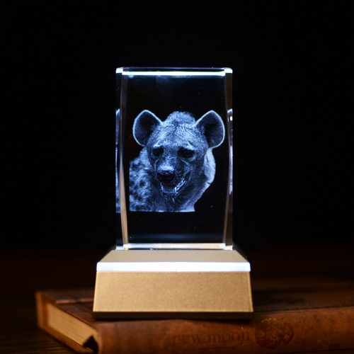Hyena 3D Laser Etched Crystal Colour Changing LED Lamp 4